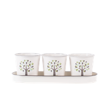 73655 Orchard Herb Pots